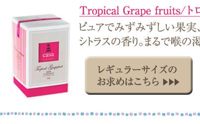 トロピカルグレープフルーツ レギュラーサイズ